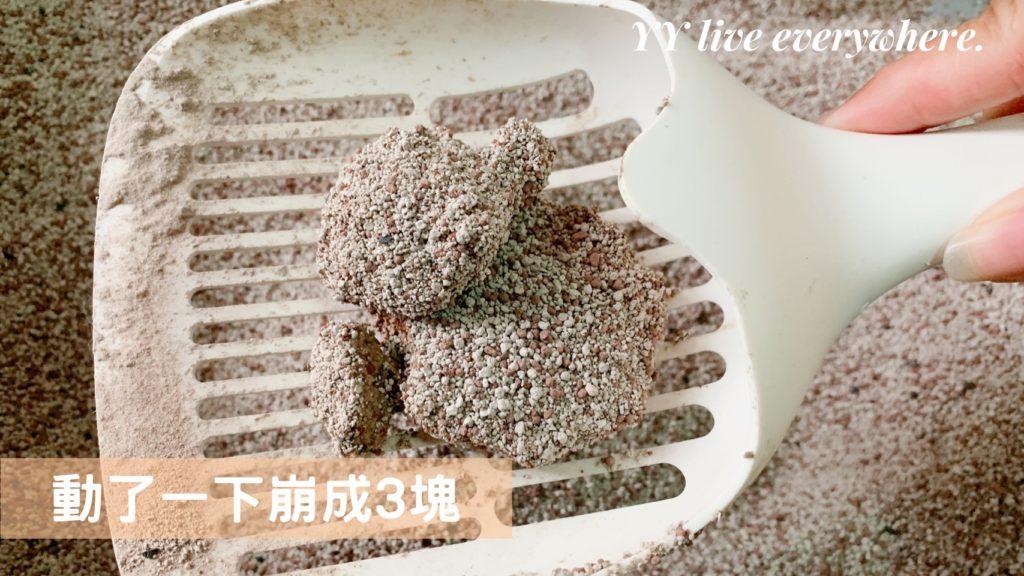 里德貓砂使用